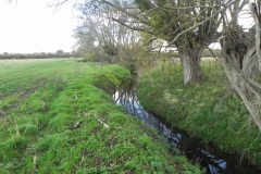 31.-River-View-downstream-from-Cary-Moor-ROW-Bridge-No.2770
