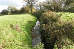 4.-Looking-upstream-from-Cary-Moor-Accomodation-Bridge-B