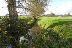 5.-Looking-Downstream-from-Cary-Moor-Accomodation-Bridge-B