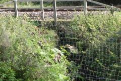 A1.-Cockhill-Railway-Culvert