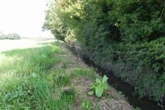 A8..-Upstream-from-Thorny-Marsh-Lane-Accomodation-Bridge-B