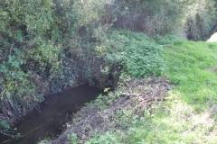 A9..-Thorny-Marsh-Lane-Accomodation-Bridge-B-Disused