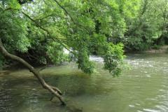 Petherton-Bridge-Mill-Weir-and-weir-bridge-1