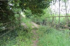 Petherton-Bridge-Mill-Weir-and-weir-bridge-6