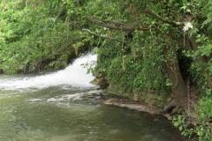 Petherton-Bridge-Mill-Weir-and-weir-bridge-8