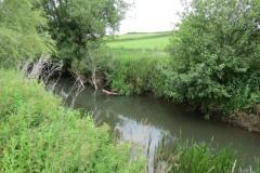 River-Parrett-flowing-between-Creedy-Bridge-and-Petherton-Bridge-13