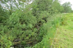 River-Parrett-flowing-between-Creedy-Bridge-and-Petherton-Bridge-4
