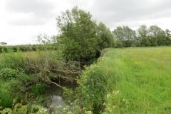 River-Parrett-flowing-between-Creedy-Bridge-and-Petherton-Bridge-8