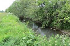 River-Parrett-flowing-between-Creedy-Bridge-and-Petherton-Bridge-9