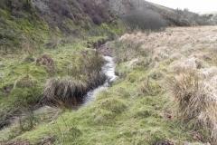 42. Downstream from Chetsford Bridge