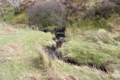 43. Downstream from Chetsford Bridge
