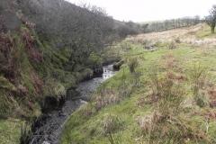 44. Downstream from Chetsford Bridge