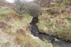 47. Downstream from Chetsford Bridge