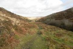 48. Looking downstream