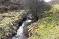 49. Downstream from Chetsford Bridge