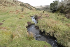 53. Upstream from confluence with Embercombe Water