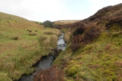 3. Flowing down to Weir Water