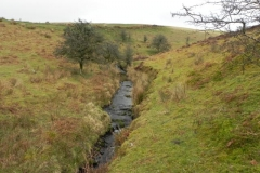 4. Flowing down to Weir Water