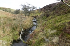 5. Flowing down to Weir Water