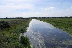 15.-Looking-downstream-from-Eastern-Moor-Bridge