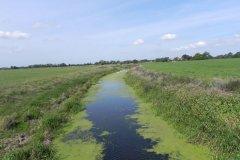 4.-Looking-downstream-from-Little-Moor-Bridge