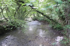 D. Egford Brook to Great Elm