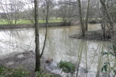 Dodham Brook