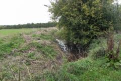 12.-River-View-near-Babcary-Meadows