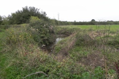 13.-River-View-near-Babcary-Meadows