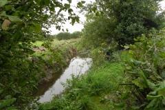 14.-River-View-near-Babcary-Meadows