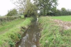 19.-Looking-downstream-from-Babcary-Medows-ROW-Bridge-2490