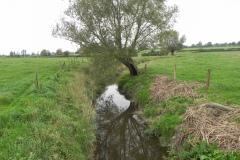 27.-Looking-downstream-from-Babcary-Accomodation-Bridge