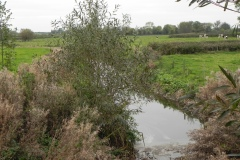 28.-Looking-upstream-from-Garston-Bridge