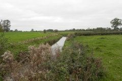 29.-Looking-upstream-from-Garston-Bridge
