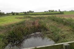 5.-Looking-upstream-from-ROW-Bridge-No.2488