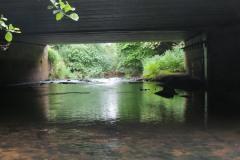 1.-Upstream-face-Petherton-Bridge-3
