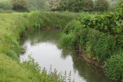 10.-Downstream-from-Petherton-Bridge-2