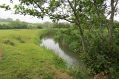 10.-Downstream-from-Petherton-Bridge-3