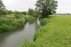 10.-Downstream-from-Petherton-Bridge-4