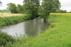 14.-Downstream-from-Bulsom-Bridge-4