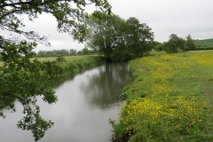 15.-Upstream-from-Careys-Mill-bridge-2