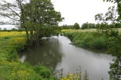 15.-Upstream-from-Careys-Mill-bridge-4