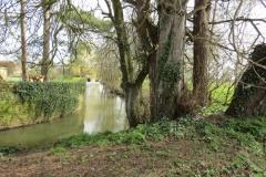 17.-Downstream-Careys-Mill-Bridge-2