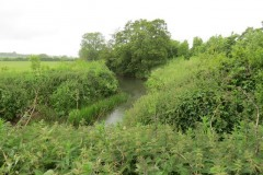 6.-Looking-downstream-from-pipe-bridge-downstream-from-Petherton-Bridge