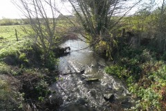 11.-Looking-downstream-from-Cary-Fitzpaine-Farm-Accomodation-Bridge