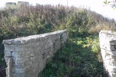 14.-Cary-Fitzpaine-Farm-Footbridge