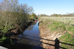 16.-Looking-upstream-from-Cary-Fitzpaine-Bridge