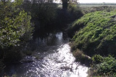 22.-Looking-downstream-from-Cary-Fitzpaine-Bridge