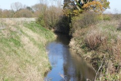 23.-River-view-downstream-from-Cary-Fitzpaine-Bridge