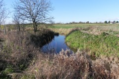24.-River-view-downstream-from-Cary-Fitzpaine-Bridge